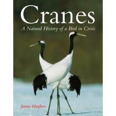 Cranes: A Natural History of a Bird in Crisis