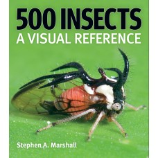 500 Insects: A Visual Reference