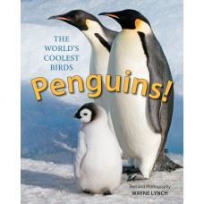 Penguins!: The World's Coolest Birds
