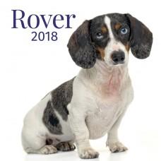 Rover 2018