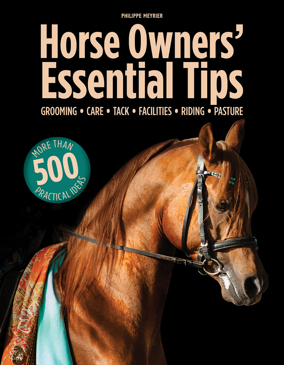 Horse Owners' Essential Tips